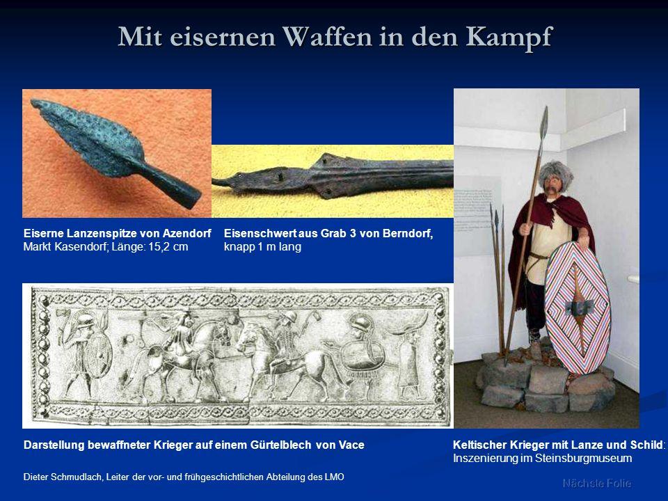 Eiserne Lanzenspitze von Azendorf Markt Kasendorf; Länge: 15,2 cm Darstellung bewaffneter Krieger auf einem Gürtelblech von Vace Mit eisernen Waffen i