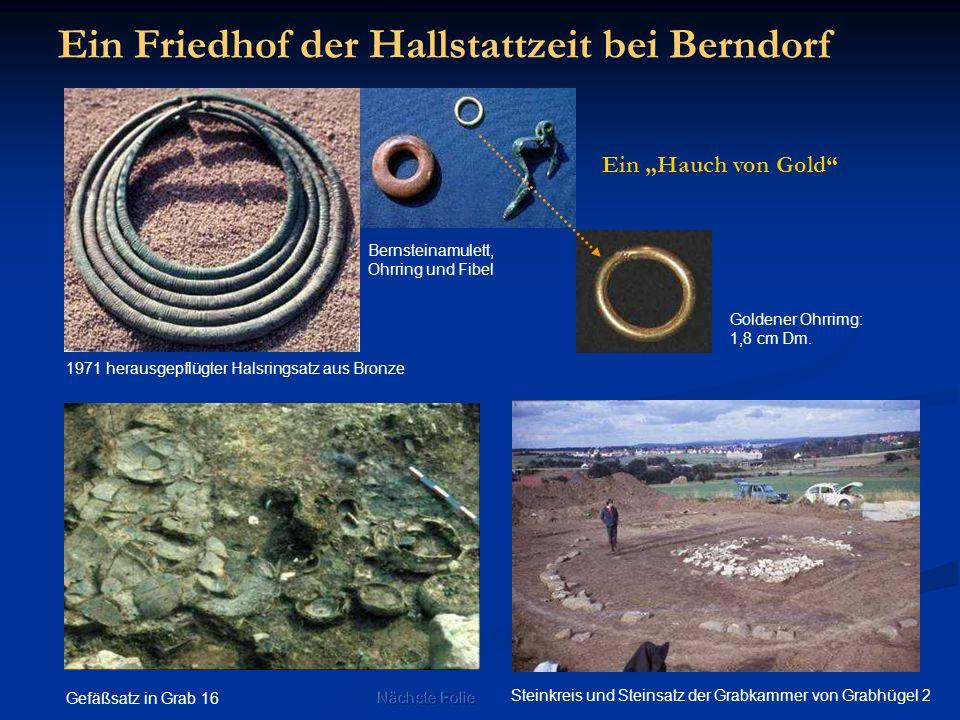 Ein Friedhof der Hallstattzeit bei Berndorf 1971 herausgepflügter Halsringsatz aus Bronze Steinkreis und Steinsatz der Grabkammer von Grabhügel 2 Gefä
