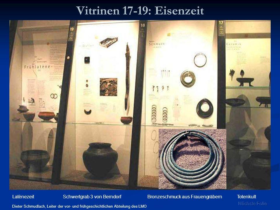 Vitrinen 17-19: Eisenzeit Dieter Schmudlach, Leiter der vor- und frühgeschichtlichen Abteilung des LMO Schwertgrab 3 von BerndorfBronzeschmuck aus Fra