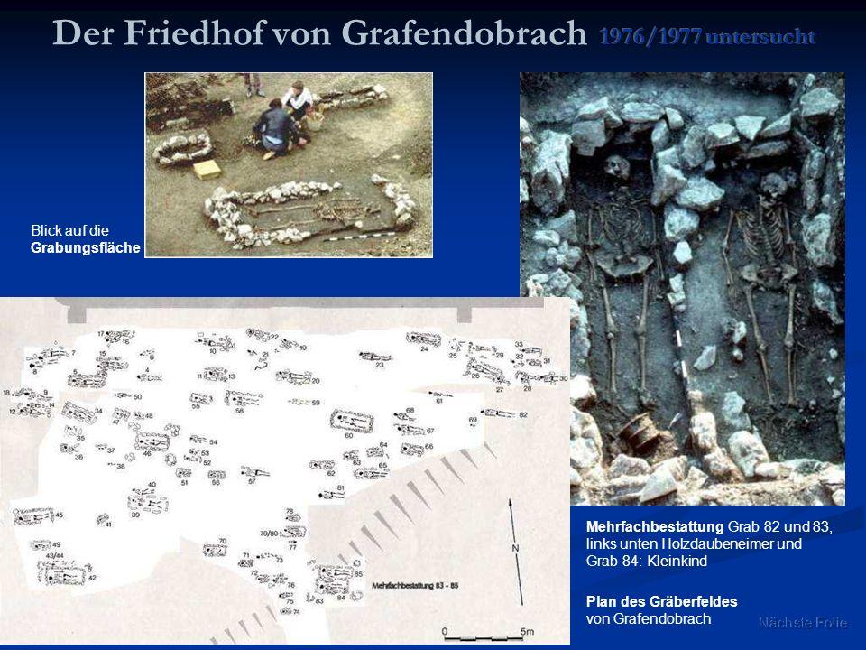 Mehrfachbestattung Grab 82 und 83, links unten Holzdaubeneimer und Grab 84: Kleinkind Plan des Gräberfeldes von Grafendobrach Blick auf die Grabungsfl