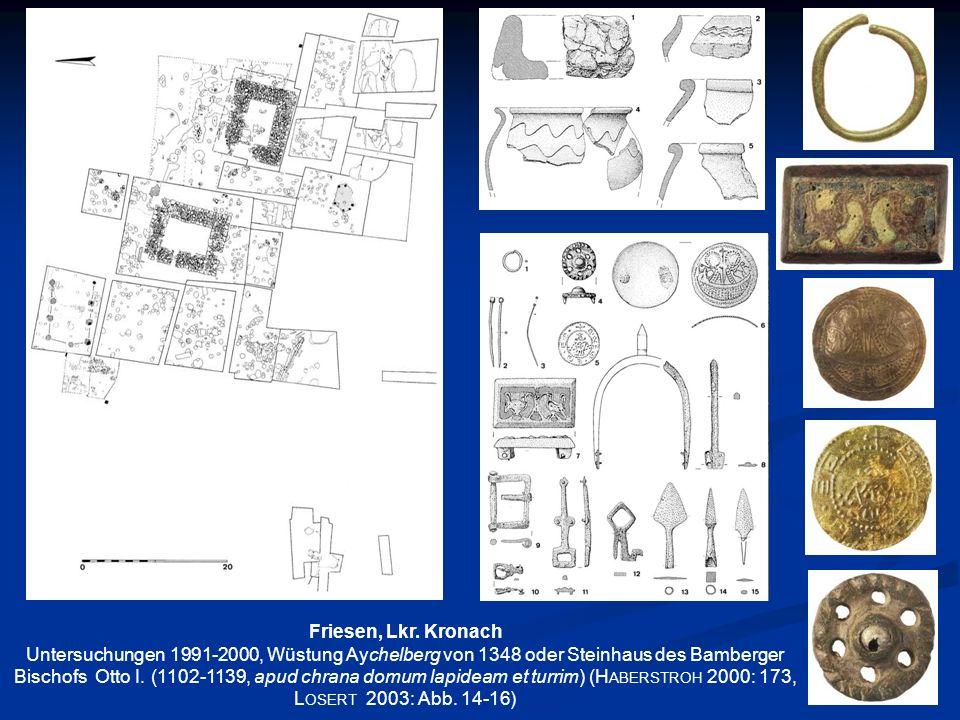 Friesen, Lkr. Kronach Untersuchungen 1991-2000, Wüstung Aychelberg von 1348 oder Steinhaus des Bamberger Bischofs Otto I. (1102-1139, apud chrana domu