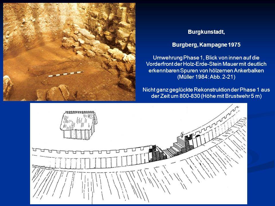 Burgkunstadt, Burgberg, Kampagne 1975 Umwehrung Phase 1, Blick von innen auf die Vorderfront der Holz-Erde-Stein Mauer mit deutlich erkennbaren Spuren