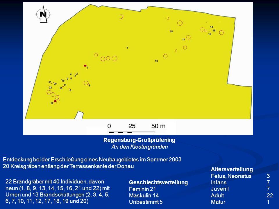 Frühmittelalterliche Gräberfelder in Nordbayern Merowinger- und karolingerzeitliche Transformationsprozesse zwischen autochthoner Bevölkerung sowie Germanen und Slawen (L OSERT 2007: Abb.