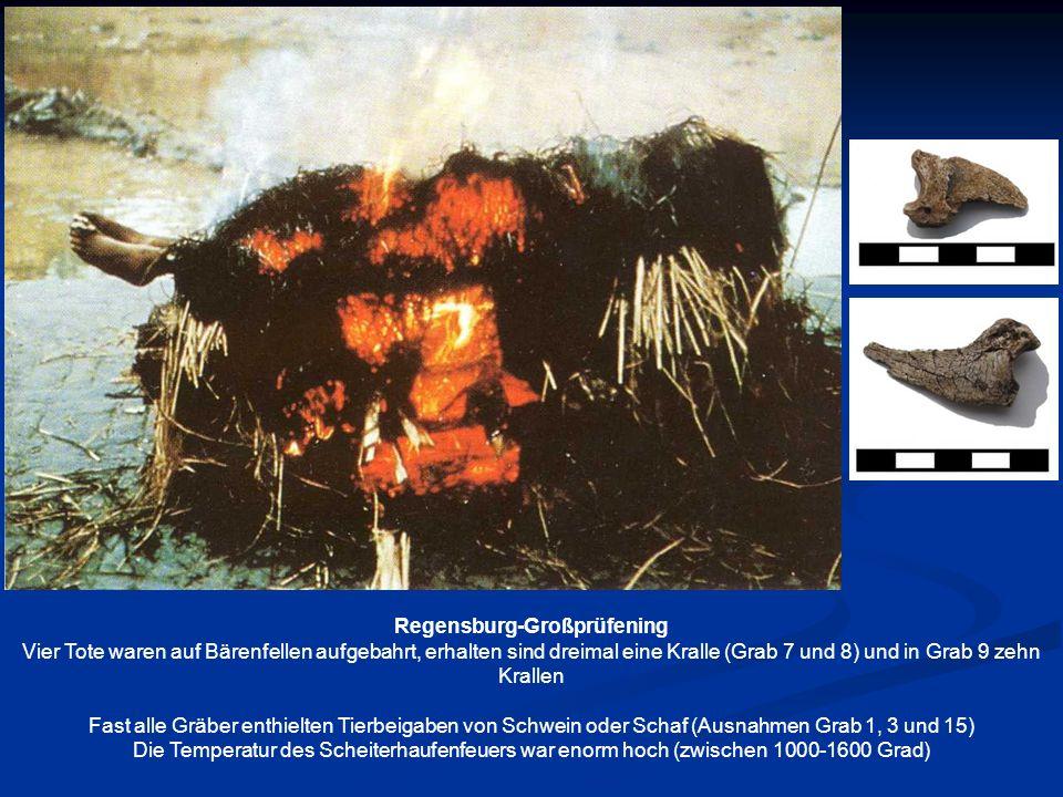 Kampagne 2003 1-3 Grab 1, 4-8 Grab 2, 9 Grab 3, 10-12 Grab 6, 13, Grab 7, 14-16 Grab 8, 17 Grab 9 Kampagne 2003 Brandschüttungsgrab 11, Mann, spätadult, Frau, frühadult,C-14 Datierung 336-546 (95,4 %) Regensburg- Großprüfening Kampagne 2004 Urnenbestattung 13 Knabe, infans II, Frau, frühadult C-14 Datierung 651- 783 (84 %) Weitere C-14 Daten Grab 20 384-569 (95,4 %) Grab 4 503-636 (72,4%) Grab 12 671-887 (95,4 %) Kampagne 2004 1Urnenbestattung 14 2 Urnenbestattung 15