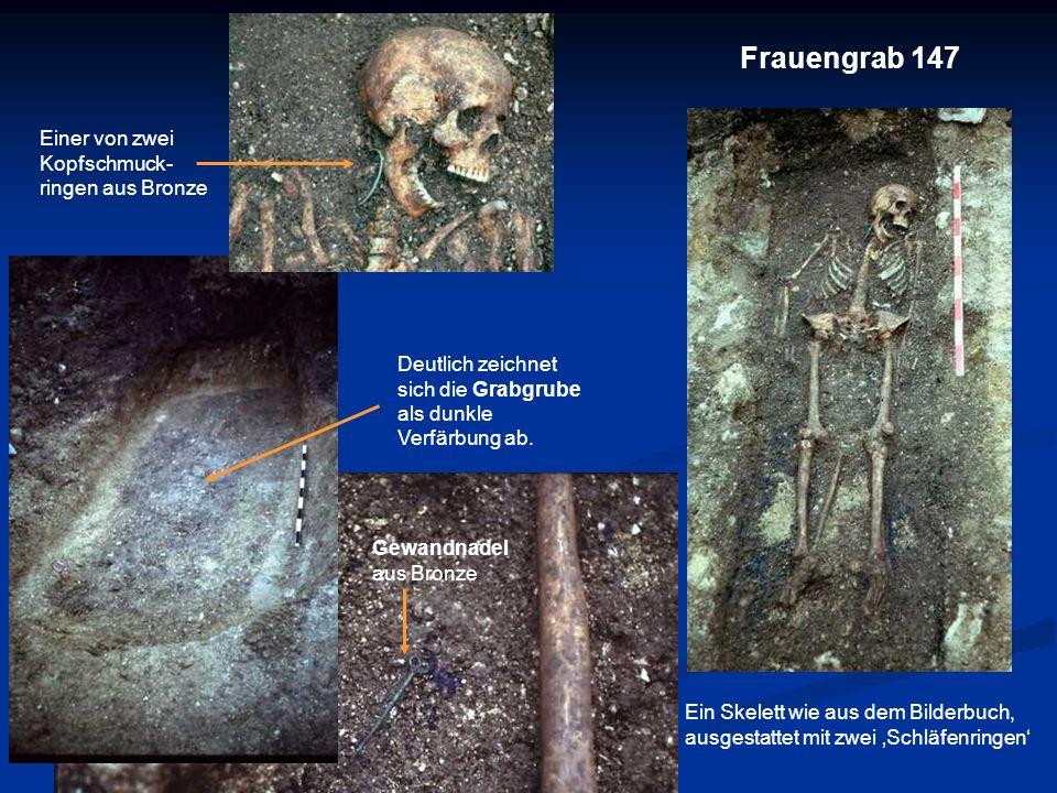 Frauengrab 147 Ein Skelett wie aus dem Bilderbuch, ausgestattet mit zwei Schläfenringen Einer von zwei Kopfschmuck- ringen aus Bronze Deutlich zeichne