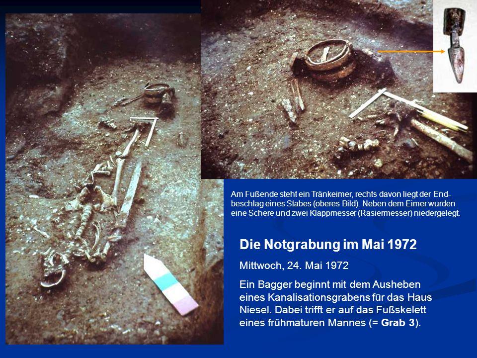 Frauengrab 147 Ein Skelett wie aus dem Bilderbuch, ausgestattet mit zwei Schläfenringen Einer von zwei Kopfschmuck- ringen aus Bronze Deutlich zeichnet sich die Grabgrube als dunkle Verfärbung ab.
