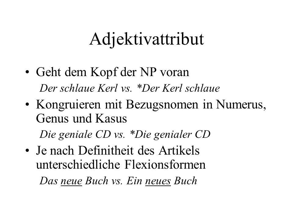 Adjektivattribut Geht dem Kopf der NP voran Der schlaue Kerl vs.