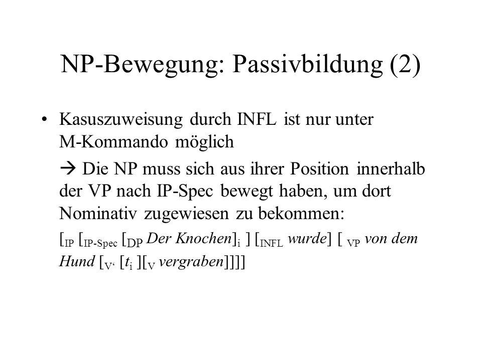 NP-Bewegung: Passivbildung (2) Kasuszuweisung durch INFL ist nur unter M-Kommando möglich Die NP muss sich aus ihrer Position innerhalb der VP nach IP-Spec bewegt haben, um dort Nominativ zugewiesen zu bekommen: [ IP [ IP-Spec [ DP Der Knochen] i ] [ INFL wurde] [ VP von dem Hund [ V [t i ][ V vergraben]]]]
