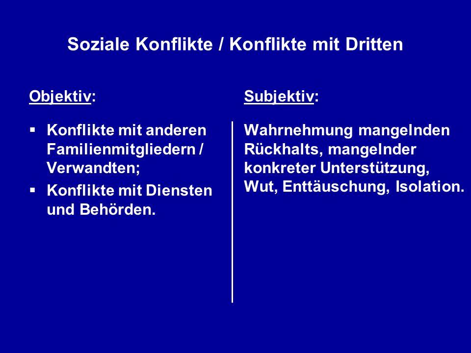 Soziale Konflikte / Konflikte mit Dritten Objektiv: Konflikte mit anderen Familienmitgliedern / Verwandten; Konflikte mit Diensten und Behörden. Subje