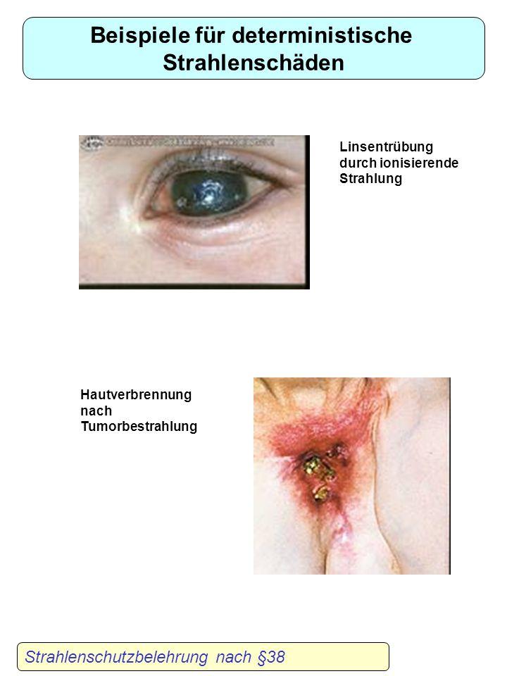 Karzinogenese I hohe Dosen Strahlenschutzbelehrung nach §38