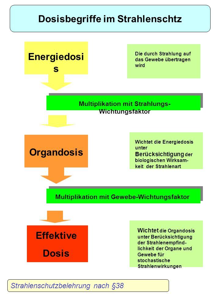Strahlenschutzbelehrung nach §38 Dosisbegriffe im Strahlenschtz Energiedosi s Die durch Strahlung auf das Gewebe übertragen wird Organdosis Wichtet die Energiedosis unter Berücksichtigung der biologischen Wirksam- keit der Strahlenart Effektive Dosis Wichtet die Organdosis unter Berücksichtigung der Strahlenempfind- lichkeit der Organe und Gewebe für stochastische Strahlenwirkungen Multiplikation mit Strahlungs- Wichtungsfaktor Multiplikation mit Gewebe-Wichtungsfaktor