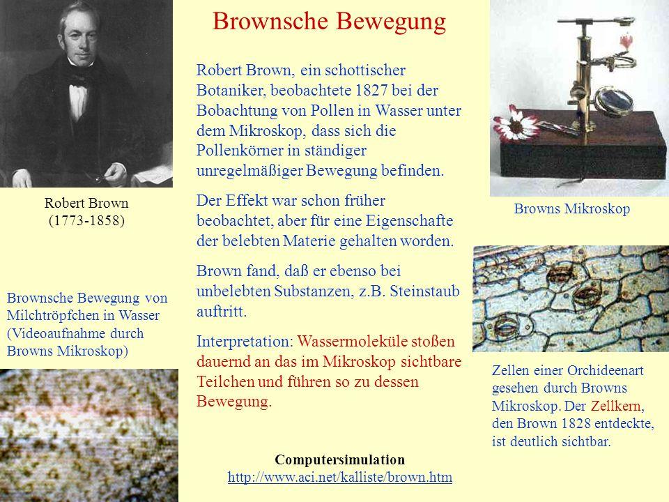 Brownsche Bewegung Computersimulation http://www.aci.net/kalliste/brown.htm http://www.aci.net/kalliste/brown.htm Robert Brown (1773-1858) Zellen eine