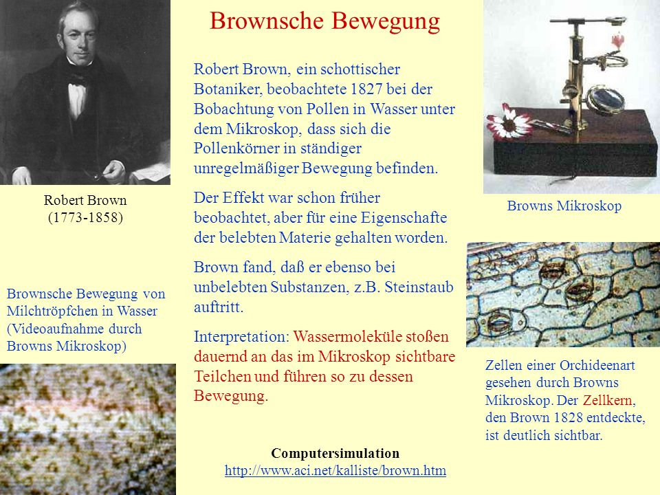 Brownsche Bewegung Computersimulation http://www.aci.net/kalliste/brown.htm http://www.aci.net/kalliste/brown.htm Robert Brown (1773-1858) Zellen einer Orchideenart gesehen durch Browns Mikroskop.