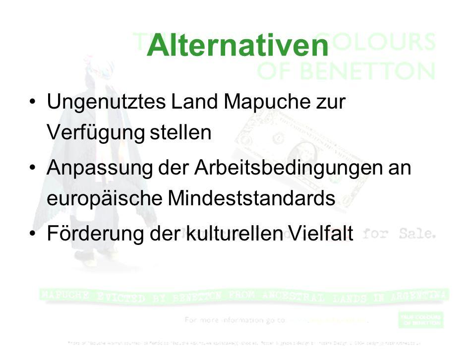 Alternativen Ungenutztes Land Mapuche zur Verfügung stellen Anpassung der Arbeitsbedingungen an europäische Mindeststandards Förderung der kulturellen