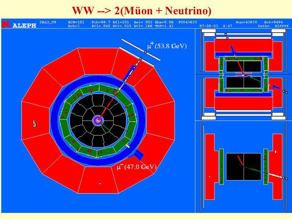 87 WW --> 2(Müon + Neutrino)