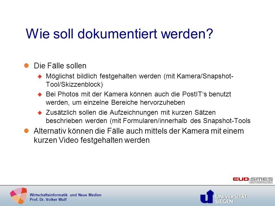 Wirtschaftsinformatik und Neue Medien Prof. Dr. Volker Wulf Wie soll dokumentiert werden? lDie Fälle sollen u Möglichst bildlich festgehalten werden (