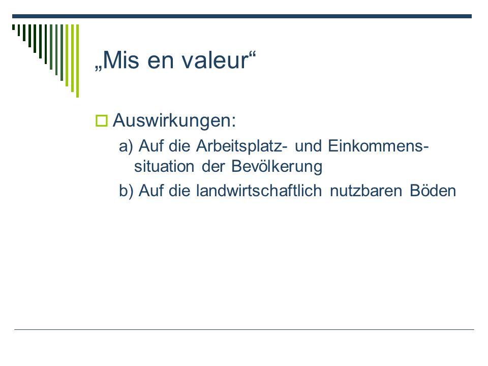 Mis en valeur Auswirkungen: a) Auf die Arbeitsplatz- und Einkommens- situation der Bevölkerung b) Auf die landwirtschaftlich nutzbaren Böden
