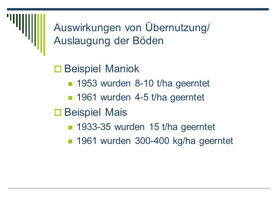 Auswirkungen von Übernutzung/ Auslaugung der Böden Beispiel Maniok 1953 wurden 8-10 t/ha geerntet 1961 wurden 4-5 t/ha geerntet Beispiel Mais 1933-35