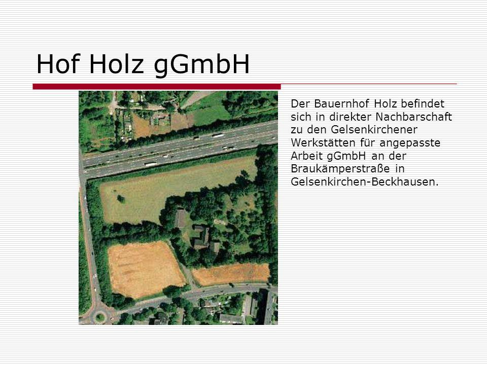 Hof Holz gGmbH Der Bauernhof Holz befindet sich in direkter Nachbarschaft zu den Gelsenkirchener Werkstätten für angepasste Arbeit gGmbH an der Braukä