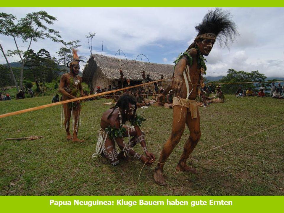 Papua Neuguinea: Kluge Bauern haben gute Ernten