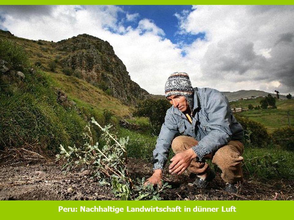 Peru: Nachhaltige Landwirtschaft in dünner Luft