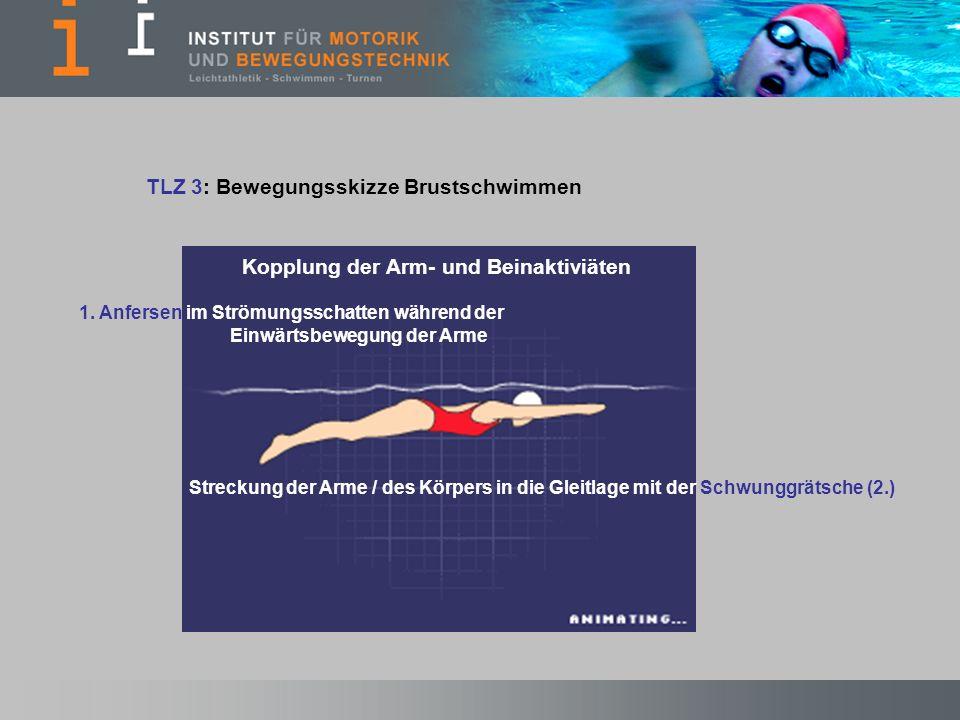 TLZ 3: Bewegungsskizze Brustschwimmen Kopplung der Arm- und Beinaktiviäten 1. Anfersen im Strömungsschatten während der Einwärtsbewegung der Arme Stre