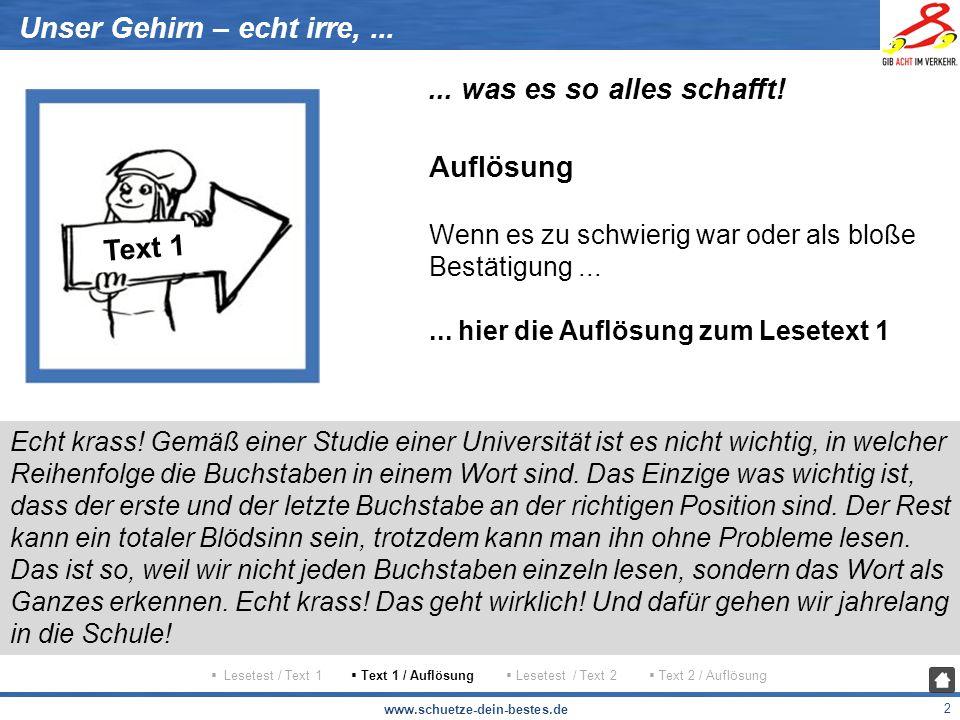 www.schuetze-dein-bestes.de 3 Unser Gehirn – echt irre,......