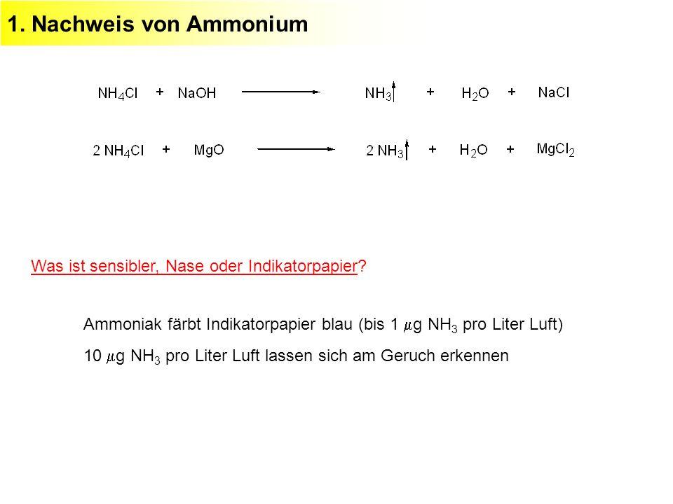 1. Nachweis von Ammonium Ammoniak färbt Indikatorpapier blau (bis 1 g NH 3 pro Liter Luft) 10 g NH 3 pro Liter Luft lassen sich am Geruch erkennen Was