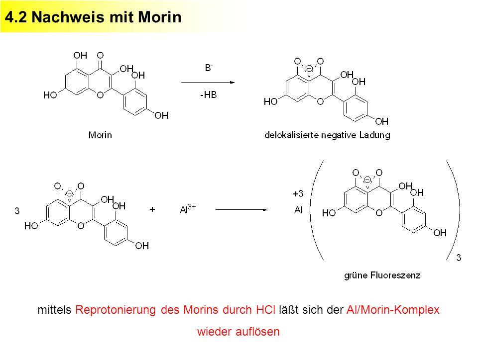 4.2 Nachweis mit Morin mittels Reprotonierung des Morins durch HCl läßt sich der Al/Morin-Komplex wieder auflösen