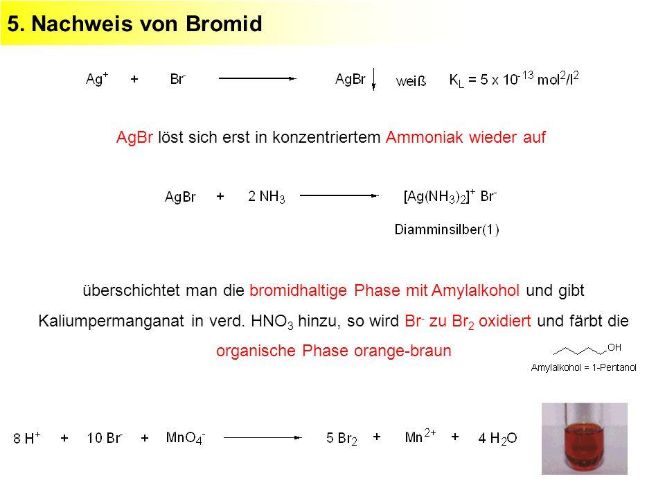 5. Nachweis von Bromid AgBr löst sich erst in konzentriertem Ammoniak wieder auf überschichtet man die bromidhaltige Phase mit Amylalkohol und gibt Ka