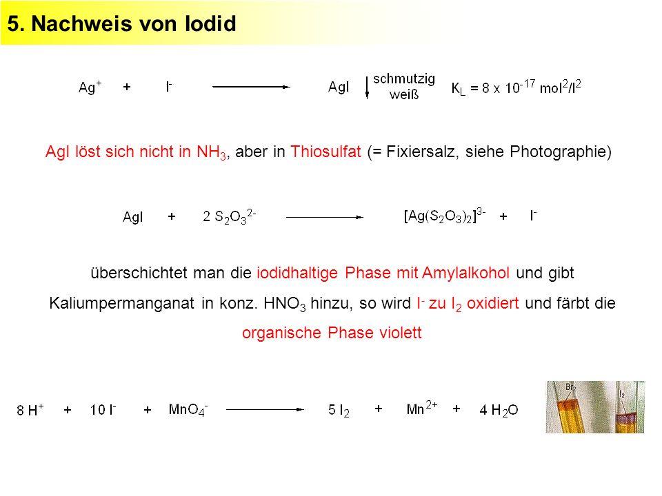 5. Nachweis von Iodid AgI löst sich nicht in NH 3, aber in Thiosulfat (= Fixiersalz, siehe Photographie) überschichtet man die iodidhaltige Phase mit