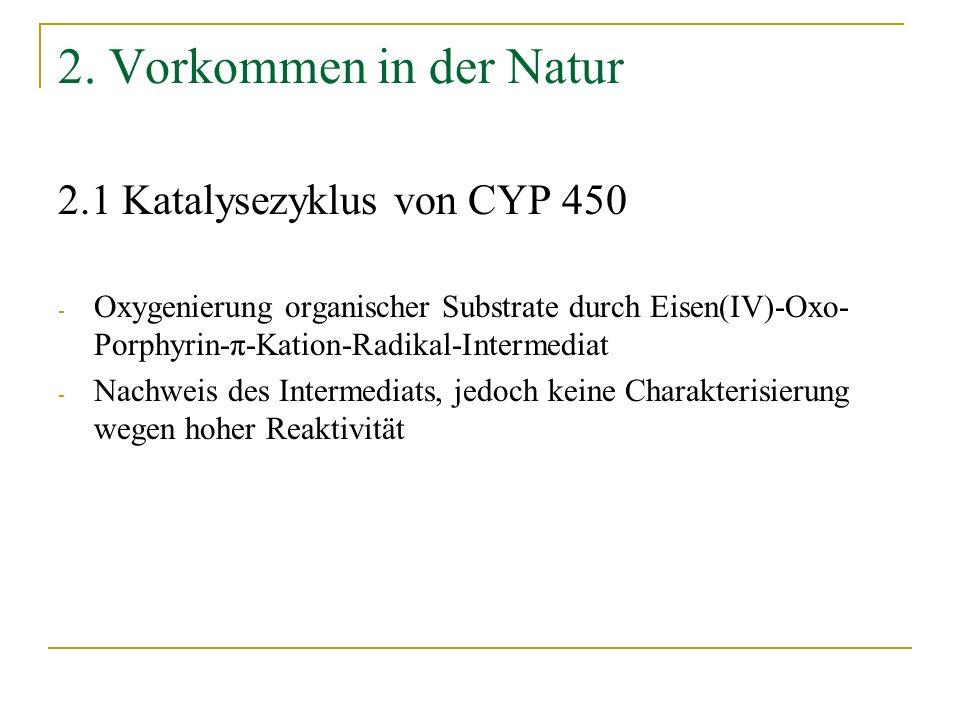 Katalysezyklus von CYP 450