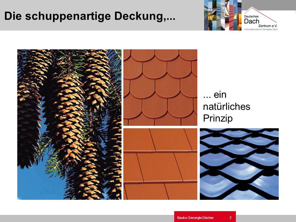 2Bauko Geneigte Dächer Die schuppenartige Deckung,...... ein natürliches Prinzip