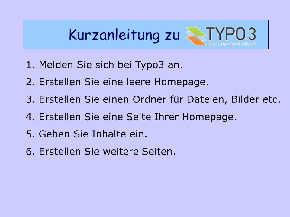 1. Melden Sie sich bei Typo3 an. 2. Erstellen Sie eine leere Homepage.