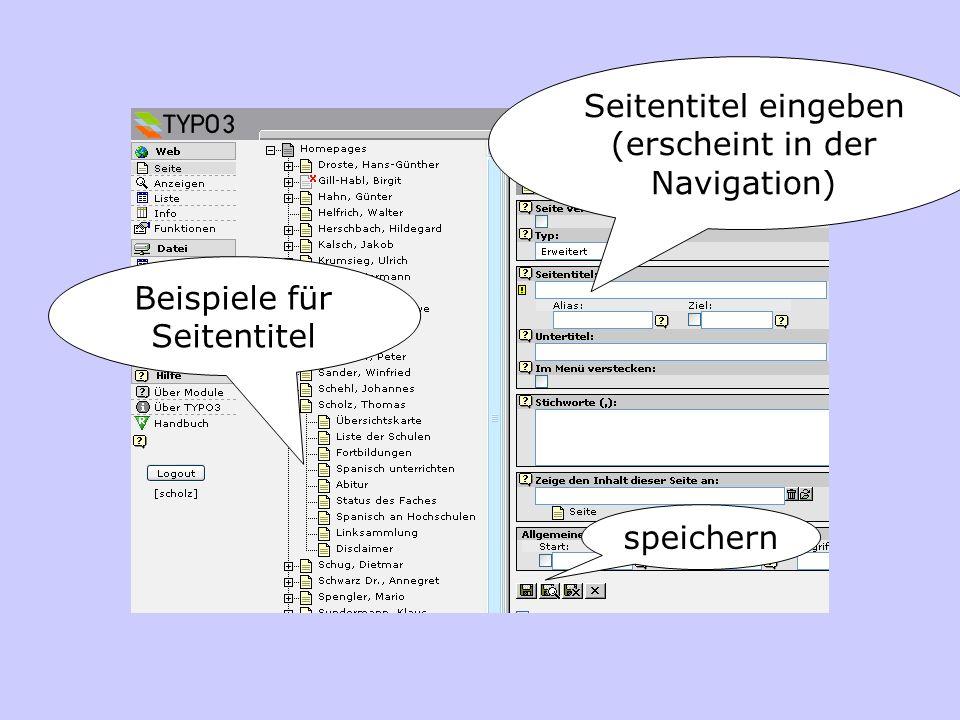 Seitentitel eingeben (erscheint in der Navigation) Beispiele für Seitentitel speichern