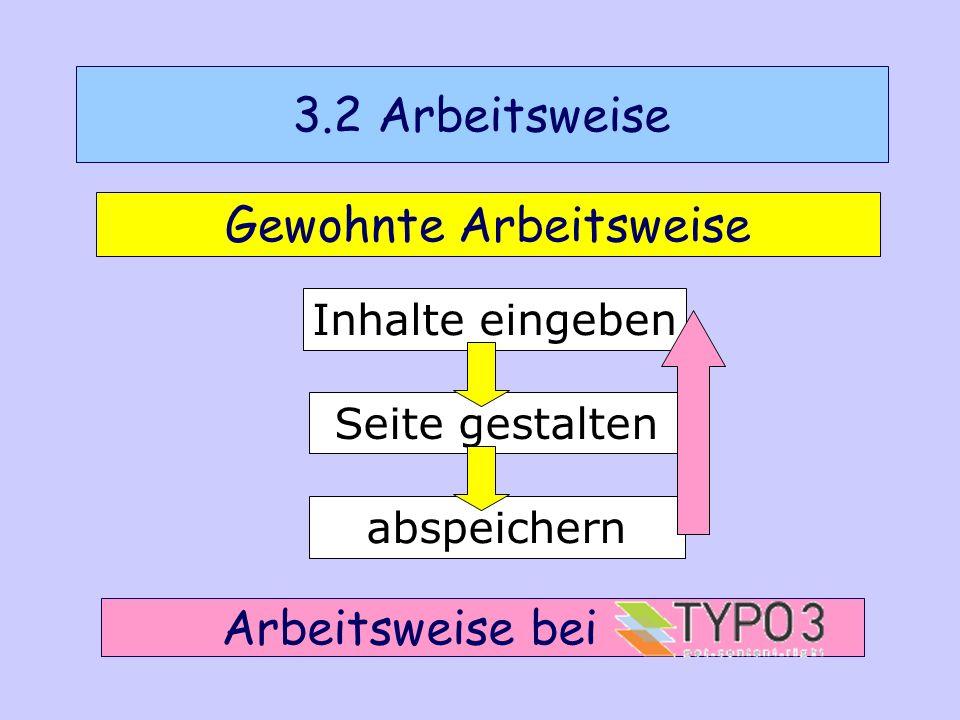 1.Melden Sie sich bei Typo3 an. 2. Erstellen Sie eine leere Homepage.