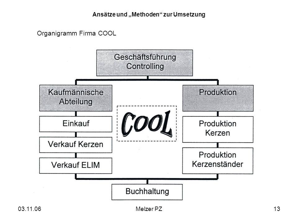 03.11.06Melzer PZ13 Ansätze und Methoden zur Umsetzung Organigramm Firma COOL