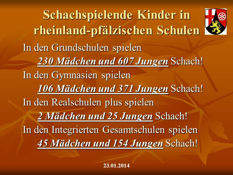 Schachspielende Kinder in rheinland-pfälzischen Schulen In den Grundschulen spielen 230 Mädchen und 607 Jungen Schach! In den Gymnasien spielen 106 Mä