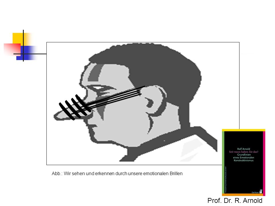 Abb.: Wir sehen und erkennen durch unsere emotionalen Brillen Prof. Dr. R. Arnold