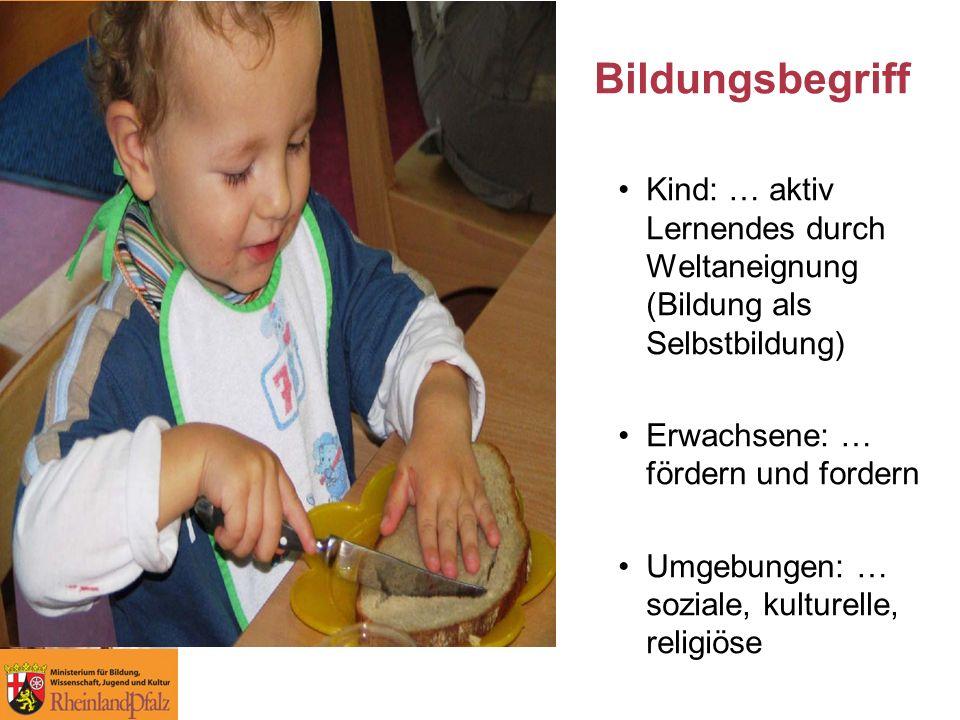 Kind: … aktiv Lernendes durch Weltaneignung (Bildung als Selbstbildung) Erwachsene: … fördern und fordern Umgebungen: … soziale, kulturelle, religiöse Bildungsbegriff