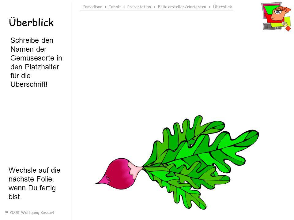 Comedison Inhalt Präsentation Folie erstellen/einrichten Überblick © 2008 Wolfgang Bossert Überblick Comedison Inhalt Präsentation Folie erstellen/ein