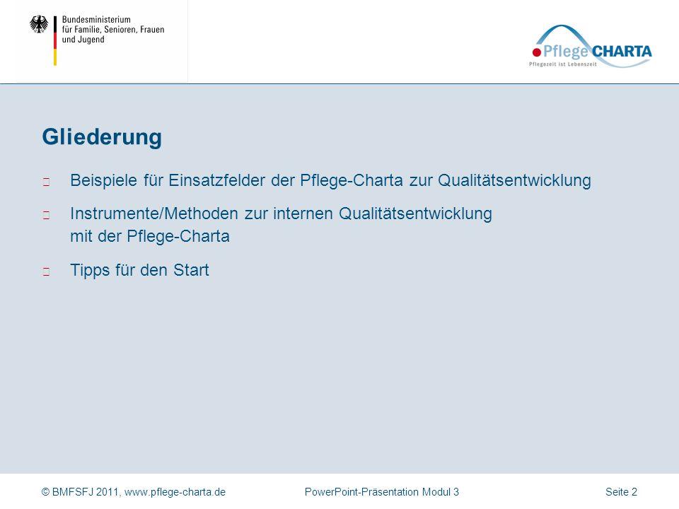 © BMFSFJ 2011, www.pflege-charta.dePowerPoint-Präsentation Modul 3 Beispiele für Einsatzfelder der Pflege-Charta zur Qualitätsentwicklung Instrumente/Methoden zur internen Qualitätsentwicklung mit der Pflege-Charta Tipps für den Start Gliederung Seite 2