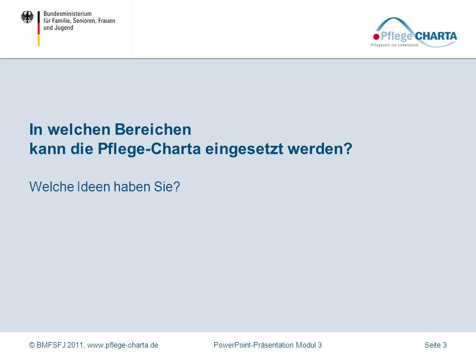 © BMFSFJ 2011, www.pflege-charta.dePowerPoint-Präsentation Modul 3 Beispiele für Einsatzfelder der Pflege-Charta zur Qualitätsentwicklung Instrumente/