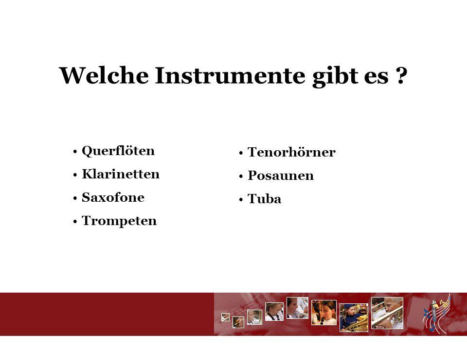Welche Instrumente gibt es Querflöten Klarinetten Saxofone Trompeten Tenorhörner Posaunen Tuba