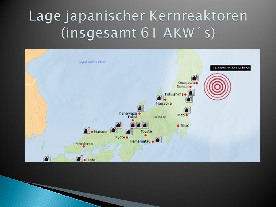 große Mengen radioaktiven Materials wurden in die Luft geschleudert Fläche von 3900000 km² kontaminiert Japan hat eine Fläche von 377835 km² Jährliche Kosten bis heute: ca.