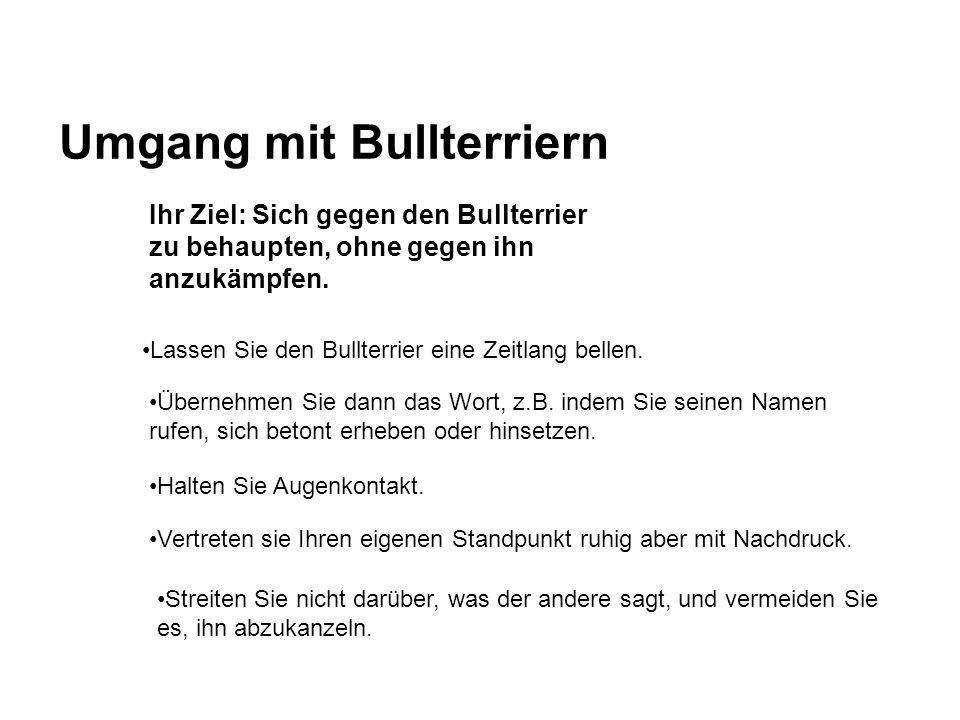 Umgang mit Bullterriern Lassen Sie den Bullterrier eine Zeitlang bellen. Ihr Ziel: Sich gegen den Bullterrier zu behaupten, ohne gegen ihn anzukämpfen