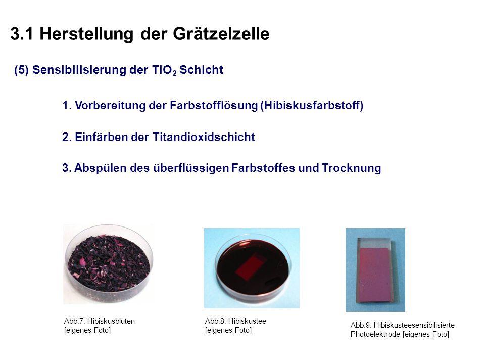 3.1 Herstellung der Grätzelzelle (5) Sensibilisierung der TiO 2 Schicht Abb.7: Hibiskusblüten [eigenes Foto] Abb.8: Hibiskustee [eigenes Foto] Abb.9: Hibiskusteesensibilisierte Photoelektrode [eigenes Foto] 1.