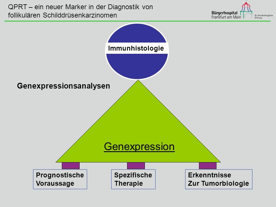 Immunhistologie Prognostische Voraussage Spezifische Therapie Erkenntnisse Zur Tumorbiologie Genexpression Genexpressionsanalysen QPRT – ein neuer Mar