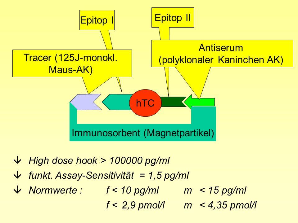 hTC Epitop I Epitop II Tracer (125J-monokl. Maus-AK) Antiserum (polyklonaler Kaninchen AK) Immunosorbent (Magnetpartikel) âHigh dose hook > 100000 pg/