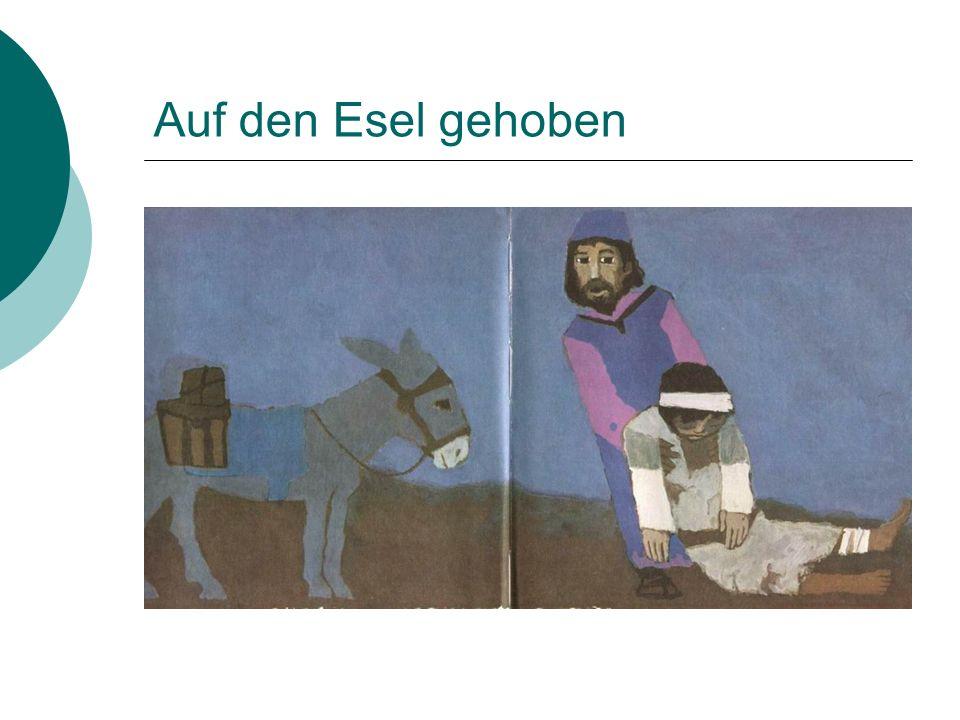 Auf den Esel gehoben